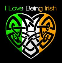 Click to buy the T Shirt! #irish #ireland #ilbi