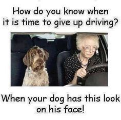 Time to give up driving!