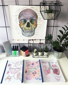 Apuntes universitarios name an accessory almost every woman wears - Woman Accessories Medical Wallpaper, Nursing School Notes, Medical School, Study Organization, School Study Tips, Student Motivation, Med School, Study Notes, Medical Students