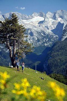 Dachstein West  zwieselalm # gosau #  dachsteinwest # wandern