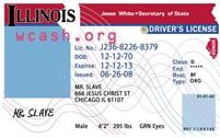 Template Illinois drivers license editable photoshop file .psd