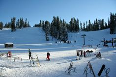 Read reviews on skiing at Badger Pass Ski Area - Yosemite National Park, CA - Kid friendly ac... - Trekaroo