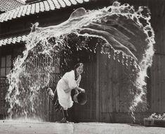 Anónimo, Japón 1954