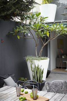 Dakterras stadstuin http://www.uk-rattanfurniture.com/product/outdoor-modern-gardenoutdoor-hanging-chair-black-rattan-grey-cushions/