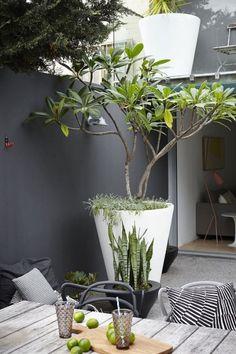 Dakterras stadstuin http://www.uk-rattanfurniture.com/product/outdoor-modern-gardenoutdoor-hanging-chair-black-rattan-grey-cushions/