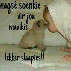 Nag Good Morning Good Night, Good Night Quotes, Afrikaanse Quotes, Goeie Nag, Good Night Sweet Dreams, Weekend Fun, Qoutes, Bible, Quotations