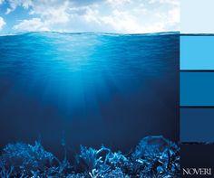 I colori del fondale marino. #mare #colori #sea #underwater #acqua #water #blu #palette #blue #tinte #paint #colors #azzurro #lightblue #tints #shades #oceano #ocean #fondale