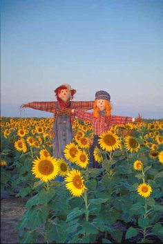 The History of Scarecrows