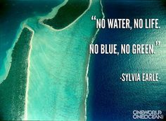 #SylviaEarle http://youtu.be/cBsGAJuTHVY?list=PLD94E8DFE7C1FC64D