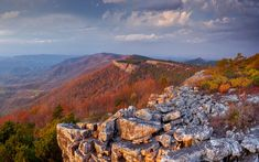 Scientists predict the Central Appalachians will help ensure nature's survival as climate change alters natural areas and weather patterns.