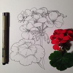 geranium ink