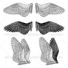 Dove Wings  #GraphicRiver         Pigeon wings isolated on white. Created in…