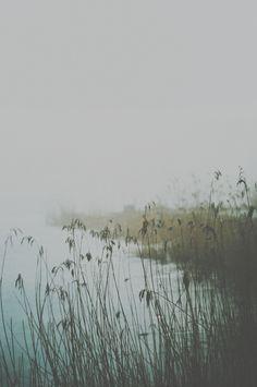 Annija Muižule | conundrum