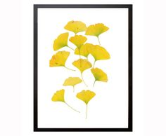 Ginkgo Leaves Gold Yellow Wall Art Botanic Art Gold by Stop4Design