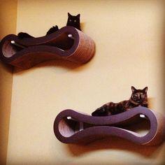 Amazon.com : PetFusion Ultimate Cat Scratcher Lounge (Walnut Brown) : Pet Beds : Pet Supplies