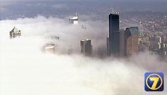 The Seattle skyline shrouded in fog