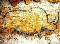 Black painting of Woolly Rhino. Rouffignac Cave, Dordogne.  11,000 BCE