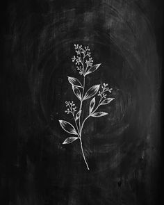 Gooseberry Moon - Chalkboard illustration Effective pictures we provide you about diy A high-quality image can tel - Chalkboard Wall Art, Chalk Wall, Chalkboard Drawings, Chalkboard Lettering, Chalkboard Designs, Chalk Drawings, Art Drawings, Blackboard Chalk, Black Chalkboard