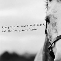 """The story of the west was written from the saddle of a horse. Wherever man placed his foot, there was a hoofprint beside it."" - Flicka"
