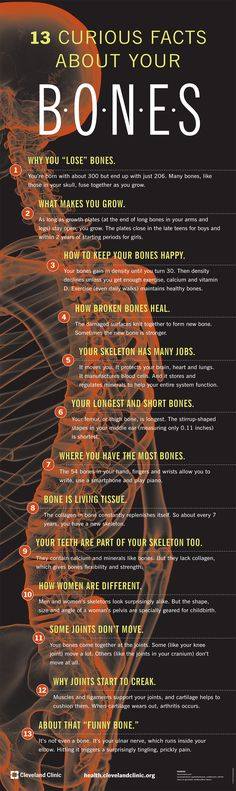 Curious Facts about Your Bones - Health Infographic. Topic: skull, skeleton, science