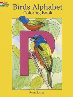 Twenty-nine bird species are spotlighted in this carefully rendered collection, where bluebirds frame the letter