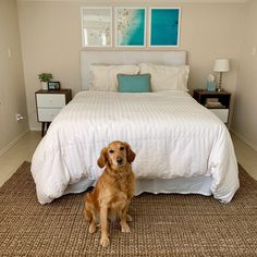 A tropical hotel, location: home. See how I reinvented my coastal inspired master bedroom three ways. The post Inside My Coastal-Inspired Master Bedroom appeared first on Passports and Papers. Inside Me, Master Bedroom, Coastal, Tropical, Inspired, Inspiration, Furniture, Home Decor, Master Suite