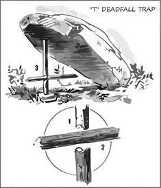 two-stick-deadfall-trap