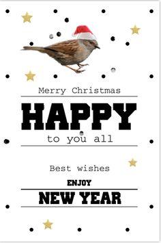 Unieke enkele kerstkaart met stippenpatroon, confetti, goudgekleurde sterren en een vogel met kerstmuts.