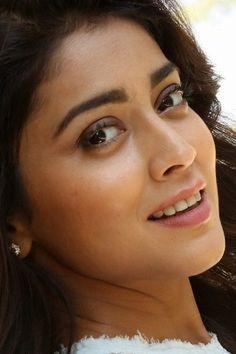 Shreya Saran Hot, Indian Actresses, Actors & Actresses, Beautiful Saree, Beautiful Women, Trisha Actress, Conversational English, Most Beautiful Indian Actress, South Actress