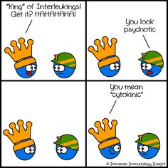 interleukins are also known as cytokines