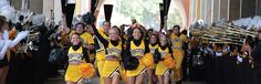 southern miss eagles football - Google Search