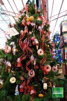 Kerst inspiratie doe je op in de kerstshow van tuincentrum Osdorp. Dit kerstthema heet Vrolijke kerst, de kleuren springen uit je boom en de versiering is allemaal met een knipoog, het is gewoon het vrolijkste kerstthema dat wij hebben! Amsterdam, Christmas Tree, Holiday Decor, Home Decor, Teal Christmas Tree, Decoration Home, Room Decor, Xmas Trees, Christmas Trees