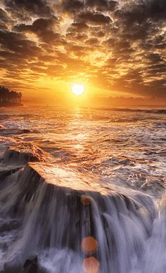 """""""A vida é a maior das dádivas, um milagre que a cada novo dia se renova e podemos experimentar, e por tão grande bênção, pelo maravilhoso presente que é mais um dia de vida, todos nos deveríamos alegrar e agradecer."""" Todos os dias ao acordar vista seu melhor sorriso, se arme de determinação e coragem e viva uma vida bem vivida. A felicidade está em cada pedacinho do nosso dia, está nas pequenas coisas que fazemos. Abra-se ao novo, deseje-se um bom dia e lute por ele! É no dia a dia que é…"""