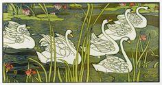 Swans by Louis John Rhead
