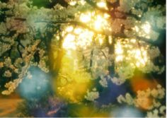 "Takeshi Suga "" I discovered the technique through an accidental double exposure shot I took with a Lomography camera. Since then, it has become an integral part of my photography. By overlaying two images, one descriptive (in focus) and one suggestive (out of focus), I aim to present simultaneously the descriptive clarity of photography with the haze of memory,"""