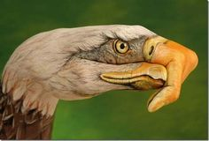 Kind of creepy, but well done Animal Paintings, Art Paintings, Awesome Paintings, Eagles Take It Easy, Lying Eyes, C G Jung, Love Me Better, Art Simple, Hand Art