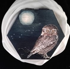 Wooden Box with an Elf Owl and the Moon in Scorpio by PaintWorkStudios on Etsy