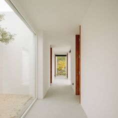 Comporta 10 by Fragmentos One Story Homes, Ideal Tools, Sense Of Place, Pine Forest, Suites, Story House, Common Area, Sliding Glass Door, Contemporary Architecture