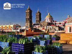 EL MEJOR HOTEL EN PUEBLA. La arquitectura de la capital, es uno de sus principales atractivos. Alrededor de la ciudad encontrará distintas joyas arquitectónicas de estilo barroco que se mantienen en perfecto estado. En Best Western Real de Puebla, le invitamos a disfrutar su recorrido y contemplar su encanto. #hotelenpuebla