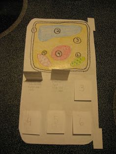 """Science Notebooking: """"Cell"""" Phone"""