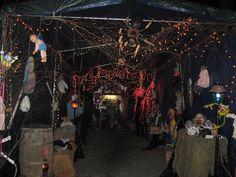 Halloween Decorations 2013--The carport at night