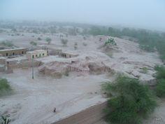 Rohi Desert