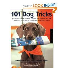 Fun ideas and lots of pictures.  Gets you excited about playing with and training your dog.