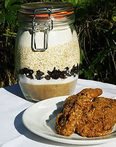 Oatmeal Raisin Spice Cookies in a Jar - These are delicious!! And a super quick, convenient gift for holidays.