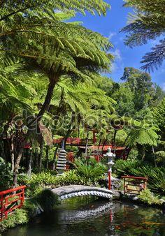 Madiera I Madera I Portugal I Island I Funchal I Travel I beach I Botanic Garden I Paraglaiding I Vacation Time I