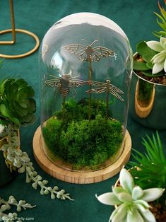 A Botanical Tablescape with 5 DIY Projects - easy crafts to help decorate a gorgeous Entomology inspired table for any party or celebration! #diy #carfts #diycrafts #tablescape #tabledecor #tabletop #tablesetting #insects #wedding #entomology #botanicaltable #dinnerparty #adulthalloween #halloweentable Festive Crafts, Easy Crafts, Craft Party, Diy Party, Party Ideas, Straw Decorations, Table Decorations, Botanical Decor, Easy Diy Projects