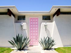 Pink large and long door with cacti