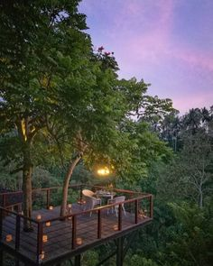 Cool Tree House Ideas to Take Your Project to the Next Level. … The goal of an awe-inspiring tree house is to make it unforgettable and a place where… Ubud, Beautiful Tree Houses, Cool Tree Houses, Jungle House, Forest House, Tree Deck, Tree Tree, Wooden House Design, Tree House Plans