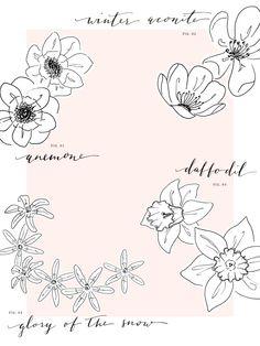 Free May wallpaper // Blooms via Coco & Mingo