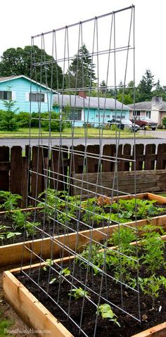 DIY Garden Trellis Here's a great way to make your own trellis. This trellis is a great way to extend your gardening space. Grow your vegetables vertically. This trellis is easy to make and folds for easy winter storage. Garden Types, Diy Garden, Garden Projects, Garden Landscaping, Garden Kids, Indoor Garden, Garden Shrubs, Bean Garden, Indoor Herbs